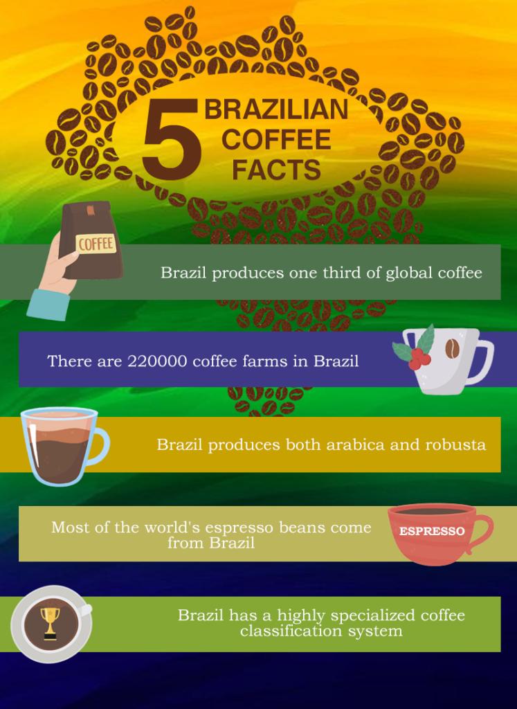 brazilian coffee facts
