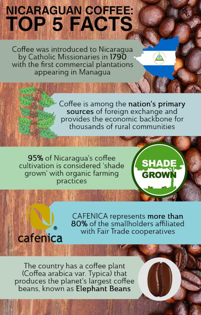nicaraguan coffee facts