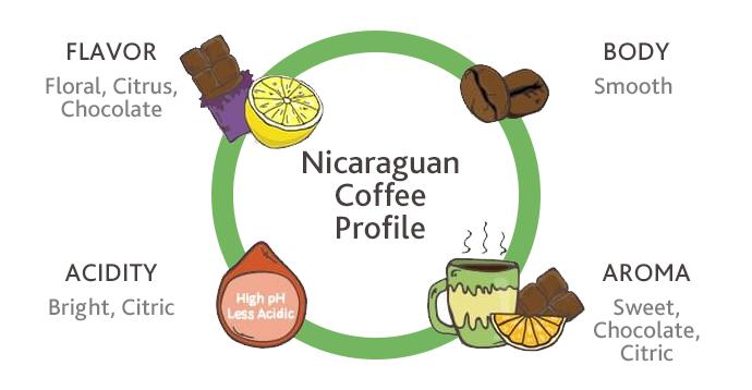 nicaraguan coffee profile