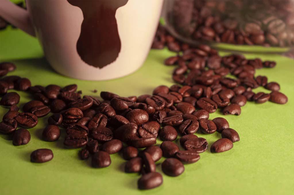 How Long Do Coffee Beans Last?